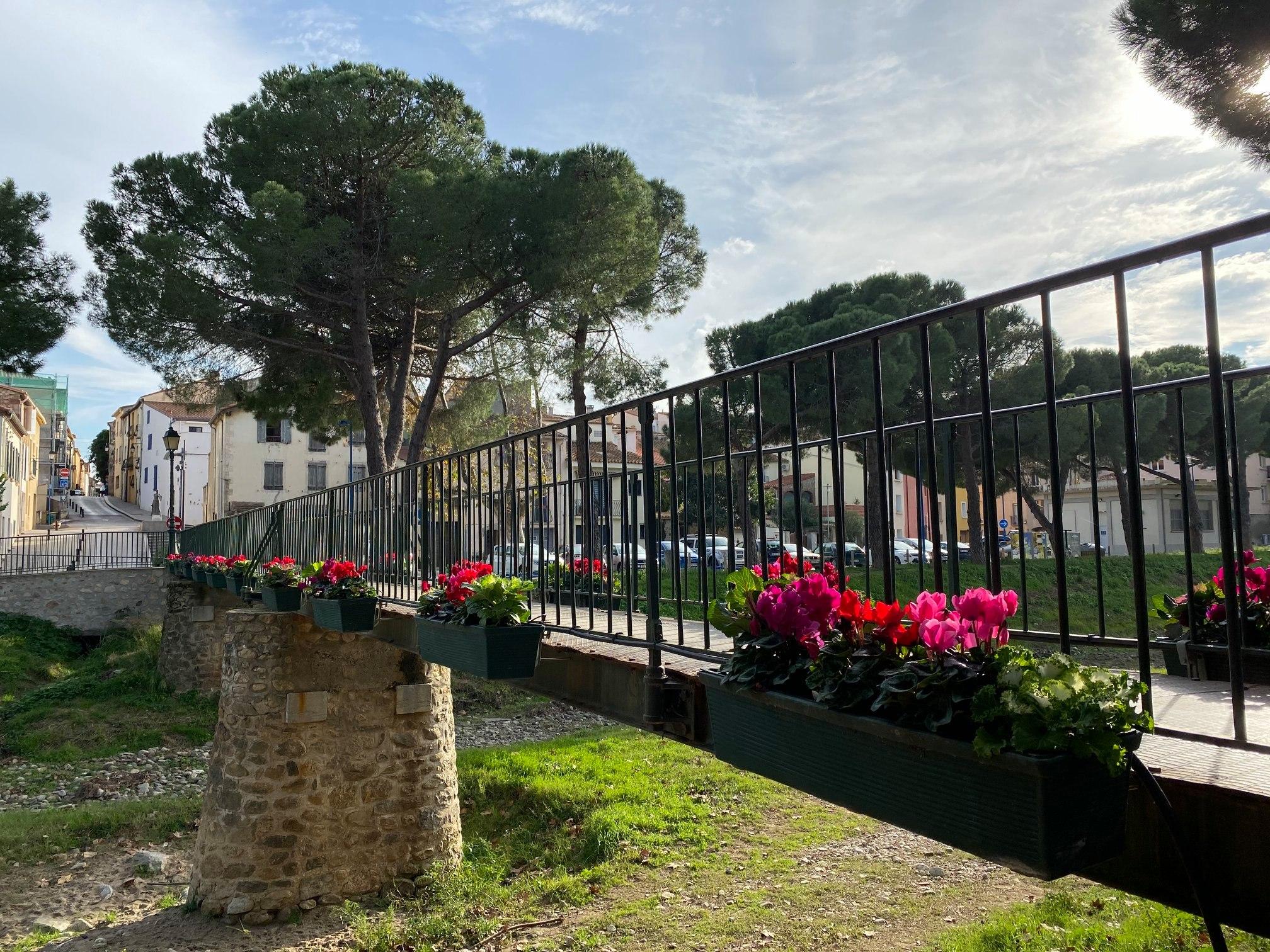 Argelès-sur-Mer : lancement d'un service de livraison à domicile