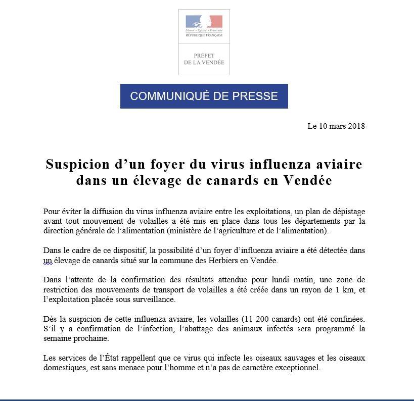 7450 canards abattus dans le Finistère — Virus aviaire