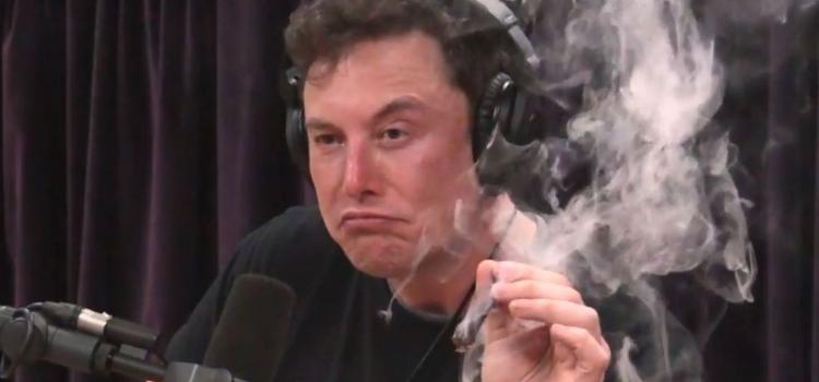 54e5f4ef5ba27 Elon Musk   Tesla chute lourdement en bourse après une interview de son PDG  fumant un joint et buvant du whisky ! (vidéo)