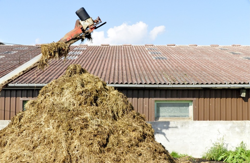 Dordogne : le cambrioleur se cache dans un tas de fumier!