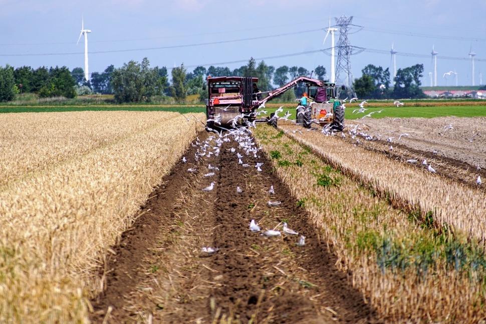 Pourquoi les agriculteurs mettent la pression sur le gouvernement